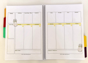 Weekly Planner for Direct Sellers